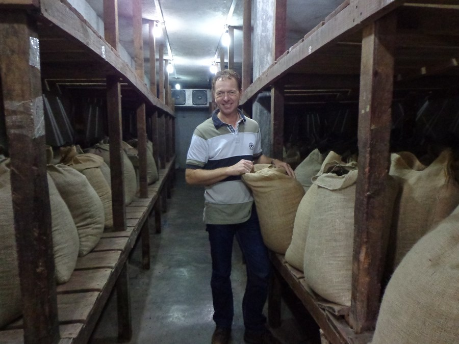 Inspecting the harvest of chamaedorea seeds in Mexico